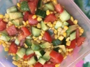 salade_avocado_camping_pliens