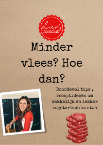 cover_ebook_pliens_mindervlees